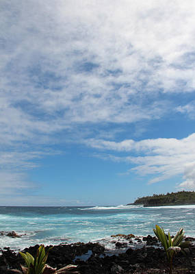 Art Print featuring the photograph Another Sunny Sunday In Hawaii by Kerri Ligatich