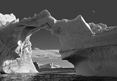 Photograph - Antarctic No. 10 by Joe Bonita