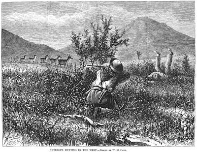 1874 Photograph - Antelope Hunting, 1874 by Granger