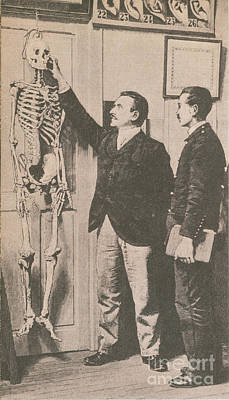Anthropometry Art Print by Photo Researchers