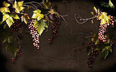 Purple Grapes Digital Art - Antique Grapes by Marsha Tudor