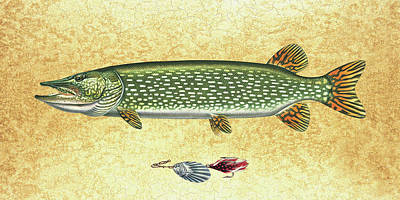 Old Painting - Antique Lure And Pike by JQ Licensing