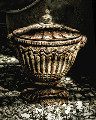Photograph - Antique Urn by Danuta Bennett