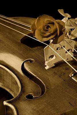 Photograph - Antique Violin Viola by M K Miller
