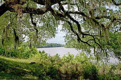 Apalachicola River Art Print