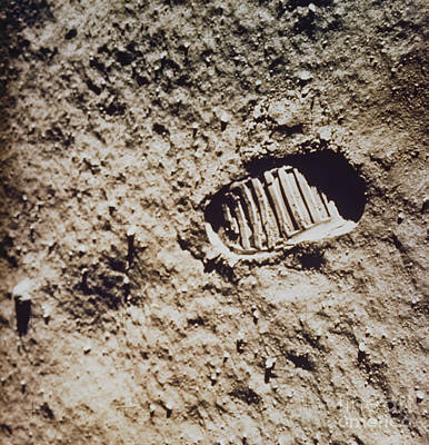 Photograph - Apollo 11 Footprint On Lunar Soil by NASA / Science Source