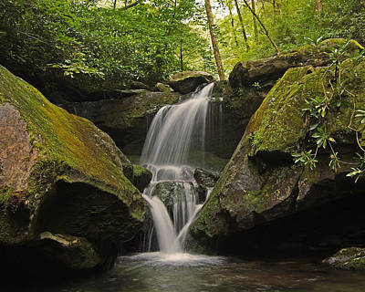 Appalachian Mountain Creek Art Print by Ulrich Burkhalter