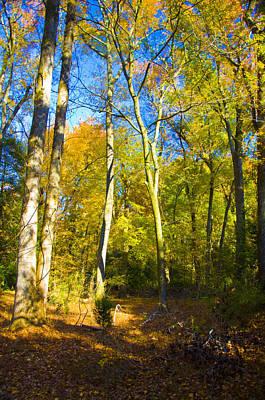 Photograph - Appalachian Trail by Rob Hemphill