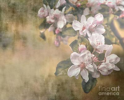 Wild And Wacky Portraits - Apple Blossom Time by Andrea Kollo