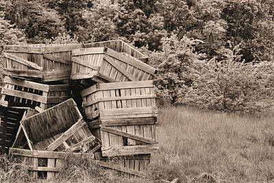 Apple Crates Sepia Art Print by JC Findley