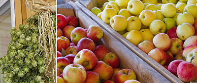Photograph - Apple Hops by Rebecca Cozart