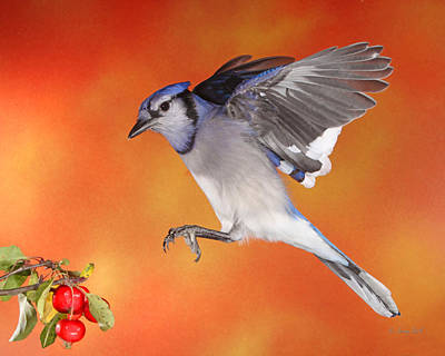 Art Print featuring the photograph Apple Thief by Gerry Sibell