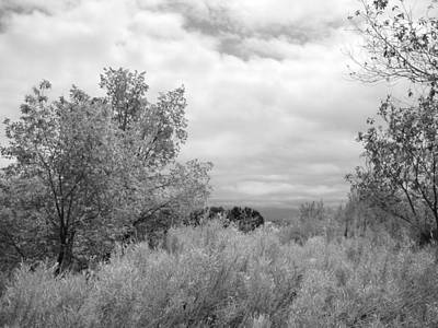 Photograph - April New Mexico - Black And White by Kathleen Grace
