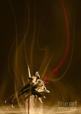 Digital Art - Aquilegia With Red Flow by Johnny Hildingsson