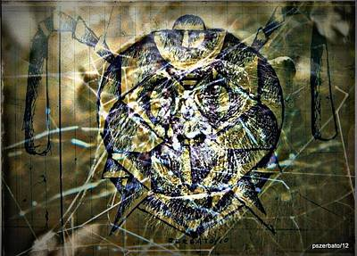 Arachnids Original by Paulo Zerbato