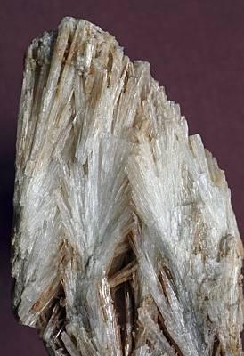 Aragonite Crystals Art Print by Dirk Wiersma