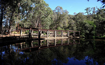 Photograph - Araluen Botanic Gardens Lake  by Tony Brown