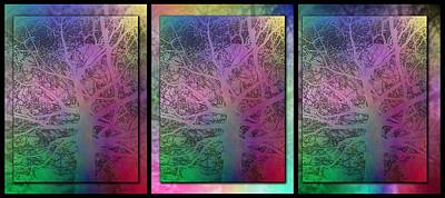 Digital Art - Arboreal Mist Trilogy by Tim Allen