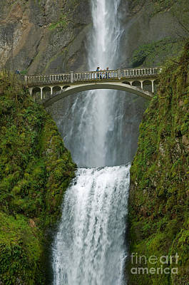 Photograph - Arch Bridge And Multnomah Falls by Ted J Clutter and Photo Researchers