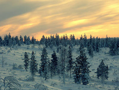Cold Temperature Photograph - Arctic At Twilight by Joel Lunt