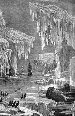 Erebus Photograph - Arctic Exploration, 19th Century by