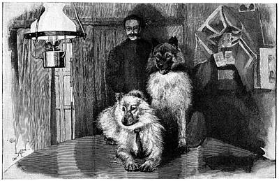 Arctic Explorer And Dogs, 19th Century Art Print by