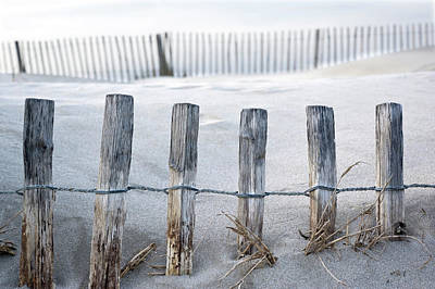 Protection Photograph - Aresquiers Beach by Anne Petitfils