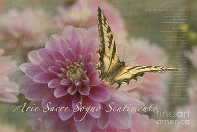Photograph - Arie Sacre Sogno Sentimento Sacred Song by Sharon Mau