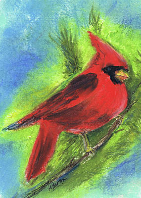 Pastel - Arizona Cardinal by Marilyn Barton
