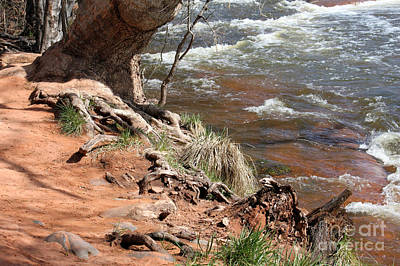 Art Print featuring the photograph Arizona Red Water by Debbie Hart