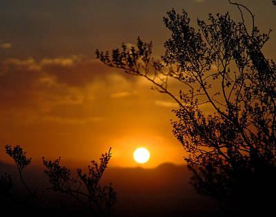 Photograph - Arizona Sunrise by Mickey Clausen