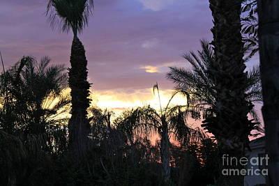 Photograph - Arizona Sunset 2 by Pamela Walrath