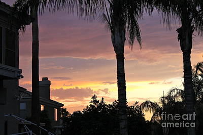 Photograph - Arizona Sunset 3 by Pamela Walrath