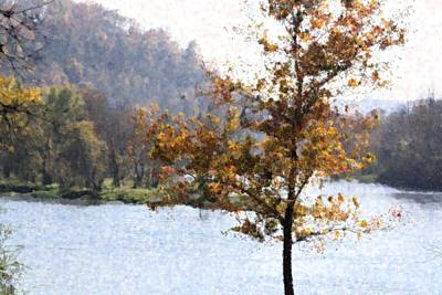 Photograph - Arkansas Autumn by Donna G Smith