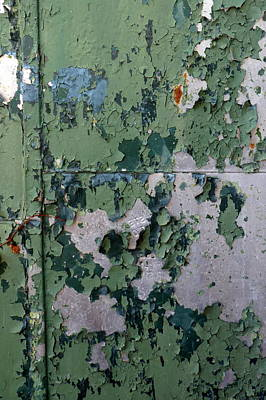 Photograph - Army Green Door by Carla Parris