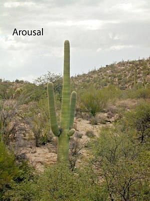 Photograph - Arousal by Douglas Barnett
