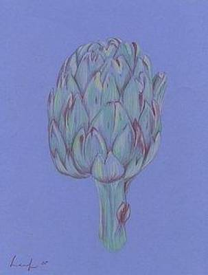 Artichoke Drawing - Artichoke by Jennifer Leaf