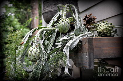 Art Print featuring the photograph Artichoke by Tanya  Searcy
