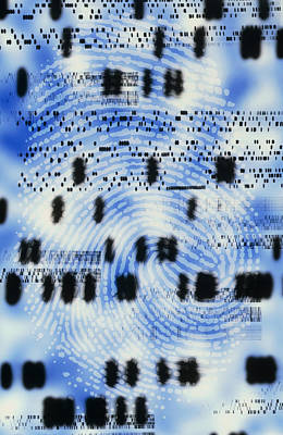 Artwork Of Dna Sequences And A Human Fingerprint Art Print
