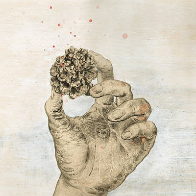 Pine Cones Digital Art - Artwork by original artwork by Furze Chan