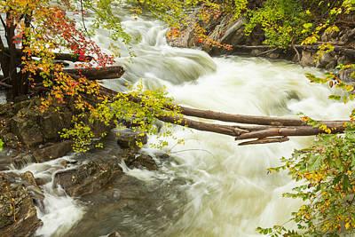 As The River Flows Art Print by Karol Livote