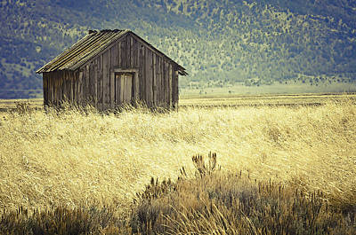 Photograph - Ash Valley Relic by Sherri Meyer