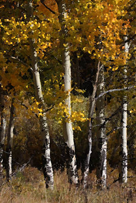 Photograph - Aspen Palate Knife by Judy Deist