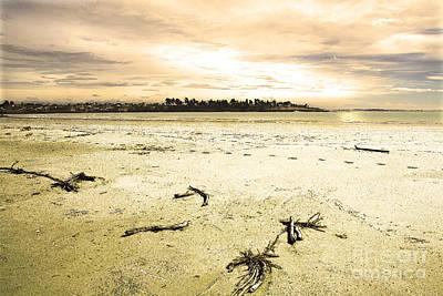 Print featuring the photograph At Caroline Bay Timaru New Zealand by Nareeta Martin