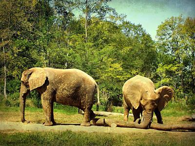 Elephants Digital Art - At Cross Purposes by Lianne Schneider