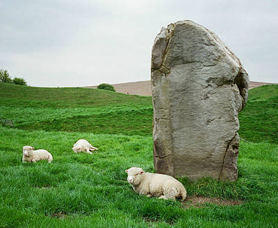 Photograph - At The Avebury Stones by Marilyn Wilson