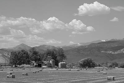 Hay Photograph - August Hay 75th  St Boulder County Colorado Black And White  by James BO  Insogna