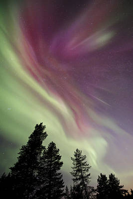 Kiruna Photograph - Aurora Borealis Above Kiruna, Sweden by David Clapp