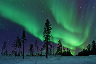 Kiruna Photograph - Aurora Borealis  Northern Lights Sweden by Dave Moorhouse
