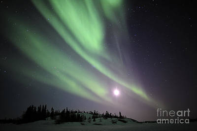Yellowknife Photograph - Aurora Borealis, Yellowknife, Northwest by Jiri Hermann